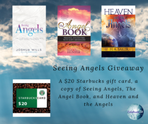 Giveaway for Joshua Mills author of Seeing Angels on tour with Celebrate Lit and featured on CarpeDiem.fyi