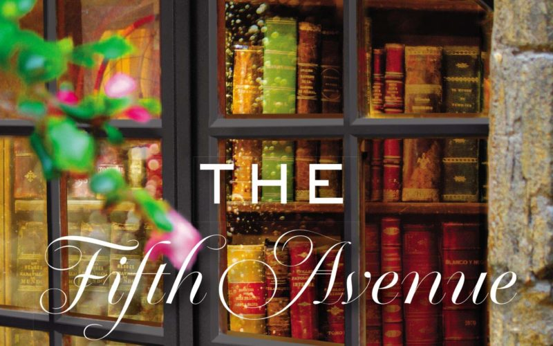 THE FIFTH AVENUE STORY SOCIETY ~ Review & Excerpt!