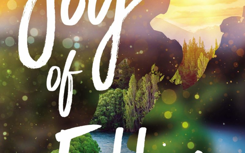 THE JOY OF FALLING ~ Review & Excerpt!