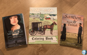 Giveaway for the authors of The Amish Menorah on tour with Celebrate Lit and featured on CarpeDiem.fyi