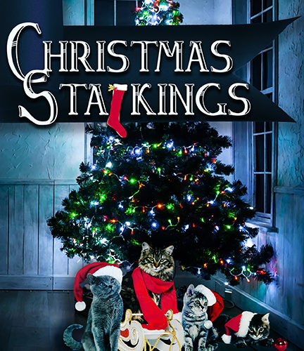 CHRISTMAS STALKINGS & NEWS YEAR'S REVOLUTIONS – Review & GiveAway!