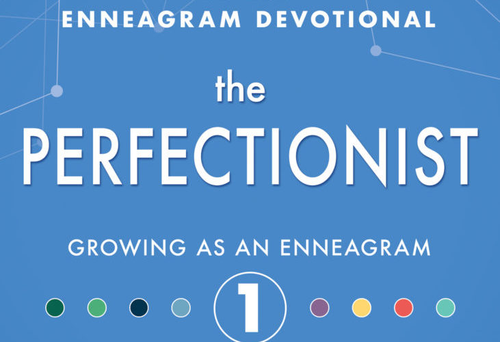 THE PERFECTIONIST ~ Review & GiveAway!